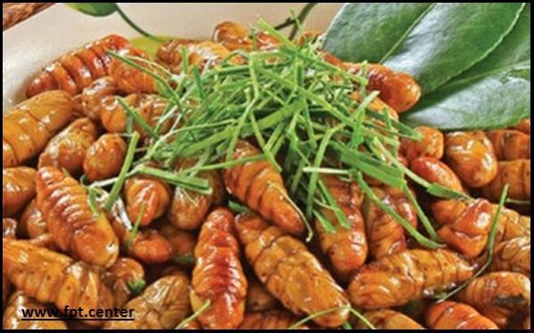 5 Chú ý khi ăn nhộng tằm để tránh bị ngộ độc